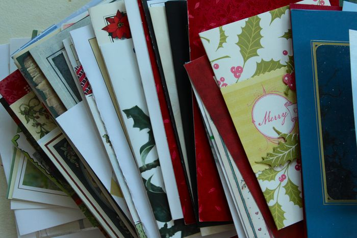 Holiday Cards…What to do?
